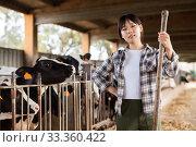 Female farmer who is feeding beasts at the cow farm. Стоковое фото, фотограф Яков Филимонов / Фотобанк Лори