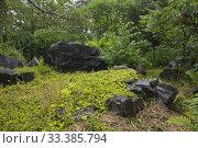 Купить «Large rocks and lush green vegetation including Rhus - Sumac trees in Zen garden in summer at the Jardin du Grand Portage garden, Saint-Didace, Lanaudiere...», фото № 33385794, снято 25 июня 2012 г. (c) age Fotostock / Фотобанк Лори