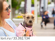 Купить «Russia, Samara, June 2019: a small shaggy dog in overalls in the arms of a beautiful mistress.», фото № 33392134, снято 18 мая 2019 г. (c) Акиньшин Владимир / Фотобанк Лори