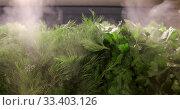 Humidifier produces steam for humidification. Стоковое видео, видеограф Ekaterina Demidova / Фотобанк Лори