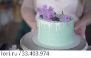 Купить «Confectioner neatly decorates turquoise wedding biscuit cake with blueberries», видеоролик № 33403974, снято 2 февраля 2019 г. (c) Ирина Мойсеева / Фотобанк Лори