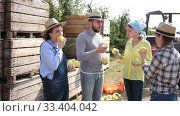 Portrait of farmer workers eating freshly harvested apples during break. Стоковое видео, видеограф Яков Филимонов / Фотобанк Лори