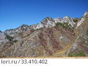 Купить «Mountain slopes covered by Rhododendron dauricum bushes with flowers (popular names bagulnik, maralnik).», фото № 33410402, снято 30 апреля 2019 г. (c) Serg Zastavkin / Фотобанк Лори