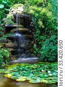 Купить «Peace full water scene with Lilly pads and freshly grown pink lotus flower», фото № 33420650, снято 9 апреля 2020 г. (c) easy Fotostock / Фотобанк Лори