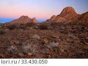 Rocky desert landscape in Spitzkoppe at dawn, Damaraland, Namibia, August. Стоковое фото, фотограф Oriol  Alamany / Nature Picture Library / Фотобанк Лори