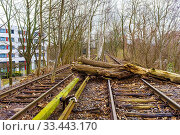 Купить «Berlin, Germany. Siemensstadt S-Bahn Line was shut down during the 1980's, but is getting a revival due to a planned reopening of the line in 2025. Meanwhile...», фото № 33443170, снято 20 февраля 2020 г. (c) age Fotostock / Фотобанк Лори