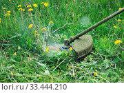 Купить «Worker mowing grass and dandelion with a trimming machine», фото № 33444210, снято 30 мая 2020 г. (c) easy Fotostock / Фотобанк Лори