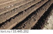 Купить «Plowed field with garden-beds in the spring», видеоролик № 33445202, снято 5 февраля 2020 г. (c) Яков Филимонов / Фотобанк Лори