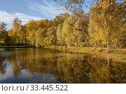 """Купить «Музей-усадьба """"Ясная Поляна"""" осенью. Водный пейзаж с видом на Большой пруд солнечным днём», эксклюзивное фото № 33445522, снято 3 октября 2019 г. (c) Игорь Низов / Фотобанк Лори"""