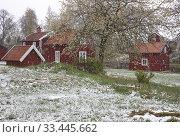 Купить «Stensjo by Smaland, Sweden.», фото № 33445662, снято 4 мая 2019 г. (c) age Fotostock / Фотобанк Лори