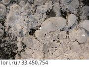 Купить «Wonderful white large and small air bubbles», фото № 33450754, снято 26 ноября 2019 г. (c) Pavel Biryukov / Фотобанк Лори