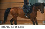 Купить «Young woman with long hair riding a brown horse on the hippodrome», видеоролик № 33451186, снято 4 июня 2020 г. (c) Константин Шишкин / Фотобанк Лори