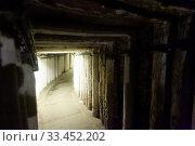 Купить «Old drift in the back of the mine», фото № 33452202, снято 1 июля 2020 г. (c) Яков Филимонов / Фотобанк Лори
