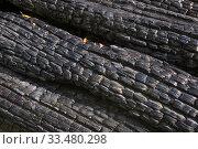 Фактура обгоревшей деревянной стены. Стоковое фото, фотограф Виктор Карасев / Фотобанк Лори