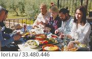 Купить «Joyful meeting of friends near the summer farm», видеоролик № 33480446, снято 26 апреля 2019 г. (c) Яков Филимонов / Фотобанк Лори