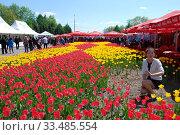 Купить «Цветник на Поклонной горе в Москве», эксклюзивное фото № 33485554, снято 9 мая 2010 г. (c) lana1501 / Фотобанк Лори