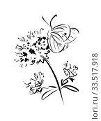 Купить «Бабочка на цветке. Черно-белая иллюстрация.», иллюстрация № 33517918 (c) М Б / Фотобанк Лори