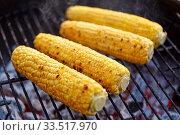 close up of corn roasting on grill. Стоковое фото, фотограф Syda Productions / Фотобанк Лори