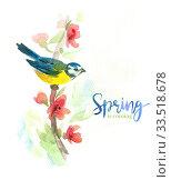 Купить «Gentle watercolor background with titmouse», иллюстрация № 33518678 (c) Миронова Анастасия / Фотобанк Лори