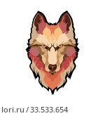 Vector Illustrative Portrait of Wolf. Beautiful gazing face of Red Wolf. Стоковая иллюстрация, иллюстратор Василий Кочетков / Фотобанк Лори