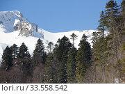 Купить «Beautiful mountains covered with snow. Sunny day and blue sky on a frosty day», фото № 33558542, снято 5 марта 2019 г. (c) Олег Хархан / Фотобанк Лори