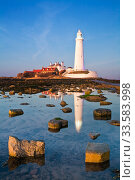 Купить «St. Mary's Lighthouse, Whitley Bay, Tyne and Wear, England, UK, February 2008.», фото № 33583998, снято 16 июля 2020 г. (c) Nature Picture Library / Фотобанк Лори