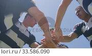 Rugby players motivating before match. Стоковое видео, агентство Wavebreak Media / Фотобанк Лори