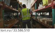 Купить «Worker walking between two shelves», видеоролик № 33586510, снято 28 сентября 2019 г. (c) Wavebreak Media / Фотобанк Лори
