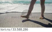Купить «Young girl walking in the water at the beach», видеоролик № 33588286, снято 21 ноября 2019 г. (c) Wavebreak Media / Фотобанк Лори
