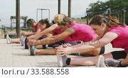 Female friends enjoying exercising at boot camp together. Стоковое видео, агентство Wavebreak Media / Фотобанк Лори