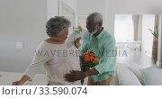 Купить «A senior African American man offering flowers to his wife», видеоролик № 33590074, снято 12 ноября 2019 г. (c) Wavebreak Media / Фотобанк Лори