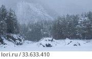 Купить «Winter taiga forest under heavy snow on the bank of river Katun.», видеоролик № 33633410, снято 6 марта 2020 г. (c) Serg Zastavkin / Фотобанк Лори
