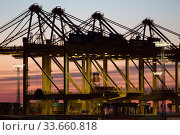 Germany, Bremerhaven - Container Bridges, EUROGATE Container Terminal Bremerhaven, hub for global and intra-European transport of goods. Редакционное фото, агентство Caro Photoagency / Фотобанк Лори