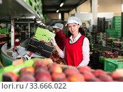 Young woman working on producing sorting line. Стоковое фото, фотограф Яков Филимонов / Фотобанк Лори