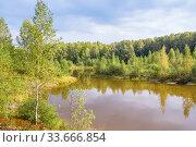 Muddy lake in the forest in autumn. Стоковое фото, фотограф Дмитрий Тищенко / Фотобанк Лори