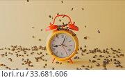 Купить «Roasted fragrant coffee beans fall on an alarm clock and around.», видеоролик № 33681606, снято 31 августа 2018 г. (c) Ярослав Данильченко / Фотобанк Лори