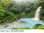 Купить «View of the Rio Celeste waterfall, tropical rainforest of Tenorio Volcano National Park, Costa Rica. The blue color arises due to a physical phenomenon...», фото № 33699026, снято 7 июля 2020 г. (c) Nature Picture Library / Фотобанк Лори