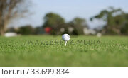 Купить «Golf player hitting the ball with his club», видеоролик № 33699834, снято 4 ноября 2019 г. (c) Wavebreak Media / Фотобанк Лори