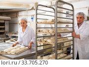 Купить «Attentive baker carrying formed products», фото № 33705270, снято 28 мая 2020 г. (c) Яков Филимонов / Фотобанк Лори