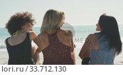 Rear view of mixed race friends talking in front of the sea. Стоковое видео, агентство Wavebreak Media / Фотобанк Лори