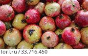 Купить «Fresh pomegranates in cardboard boxes», видеоролик № 33716450, снято 11 июля 2020 г. (c) Яков Филимонов / Фотобанк Лори