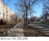 Купить «Пешеходная дорожка, выложенная плиткой на Сиреневом бульваре. Район Северное Измайлово. Город Москва», эксклюзивное фото № 33720294, снято 25 февраля 2020 г. (c) lana1501 / Фотобанк Лори