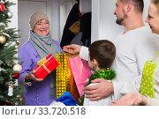 Grandma visiting her family at Christmas. Стоковое фото, фотограф Яков Филимонов / Фотобанк Лори