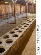 Купить «Latrines in the interior of the wooden barracks at the Birkenau concentration camp which was operated by Nazi Germany in occupied Poland during World War II and the Holocaust.», фото № 33733018, снято 30 октября 2008 г. (c) age Fotostock / Фотобанк Лори