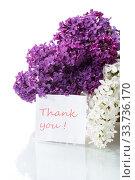 Купить «bouquet of beautiful blooming lilacs in a vase», фото № 33736170, снято 11 мая 2020 г. (c) Peredniankina / Фотобанк Лори