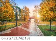 Фигурный мост Царицыно (2018 год). Стоковое фото, фотограф Baturina Yuliya / Фотобанк Лори