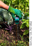 Купить «Moisture meter tester in soil. Measure soil for humidity, nitrogen and HP with digital device. Woman farmer in a garden. Concept for new technology in the agriculture.», фото № 33767002, снято 30 мая 2020 г. (c) easy Fotostock / Фотобанк Лори