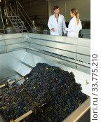 Two engineers of winery controlling process. Стоковое фото, фотограф Яков Филимонов / Фотобанк Лори
