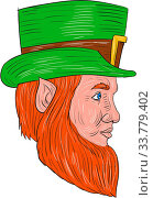 Drawing sketch style illustration of a leprechaun head viewed from the side set on isolated white background. Стоковое фото, фотограф Zoonar.com/patrimonio designs / easy Fotostock / Фотобанк Лори