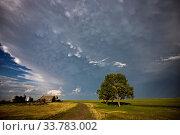 Купить «Prairie Storm Clouds in Saskatchewan Canada Mammatus», фото № 33783002, снято 2 июня 2020 г. (c) age Fotostock / Фотобанк Лори